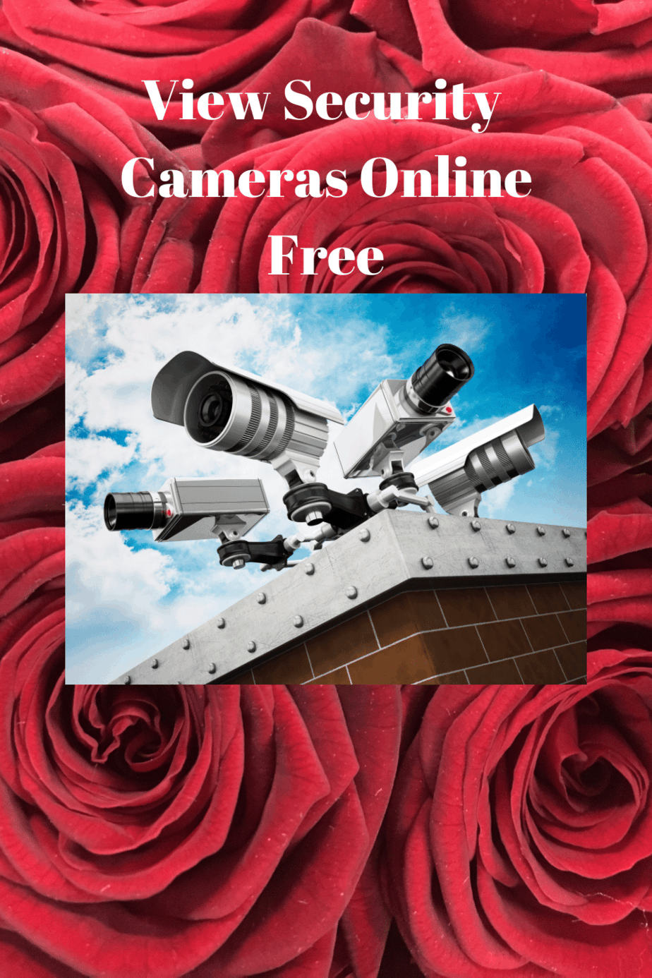 View Security Cameras Online Free